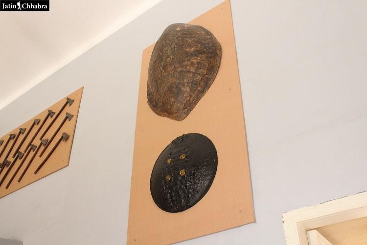 Turtle Shield - Sileh Khana