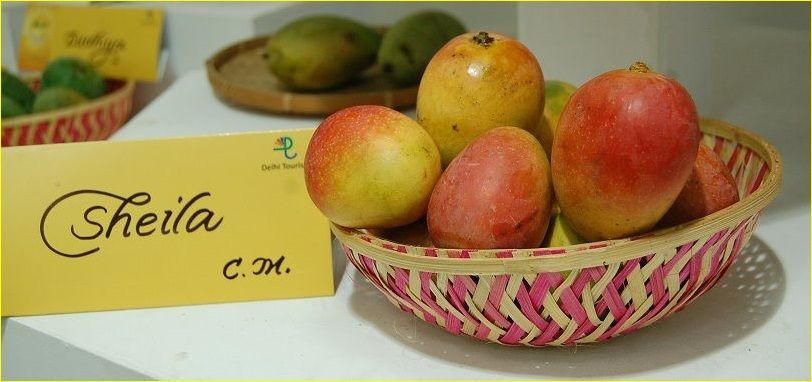 International-Mango-Festival-Dilli-Haat-Delhi