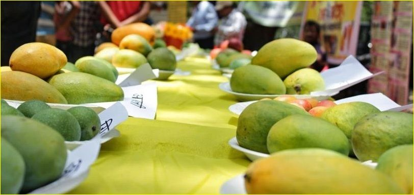 Mango-Festival-and-Farmers-Market-Lucknow