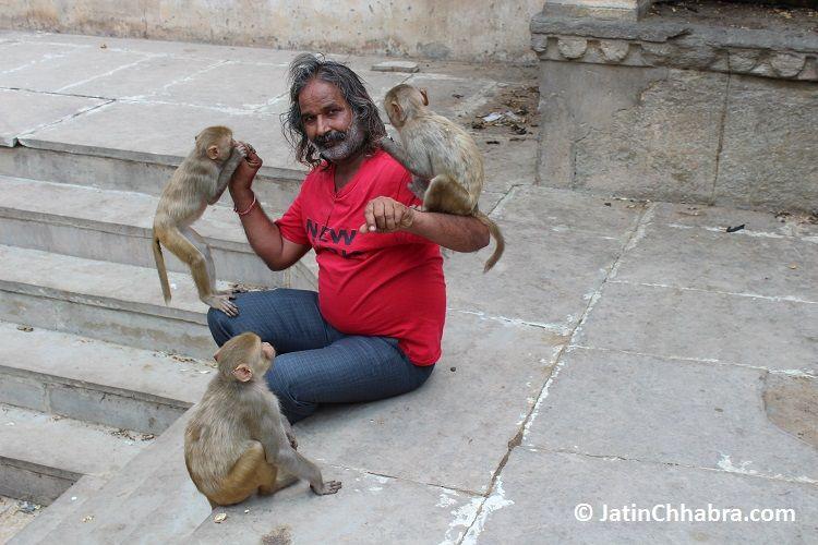 He got three, as its Jaipur, not Delhi