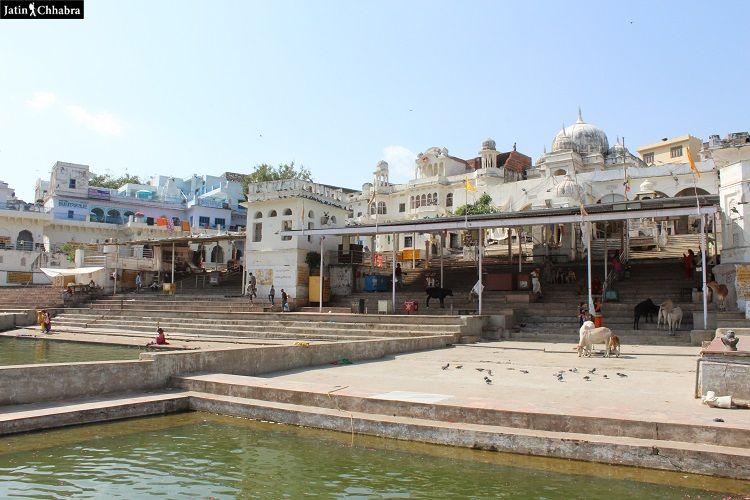 Gau Ghat at Pushkar