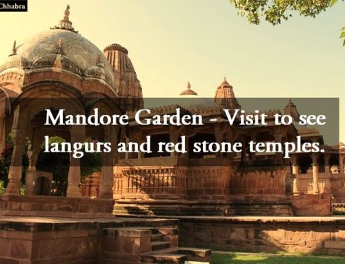 Mandore Garden – Visit to see langurs and red stone temples.